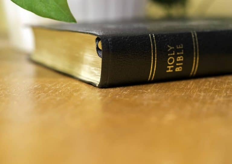Best Bible Study Tools